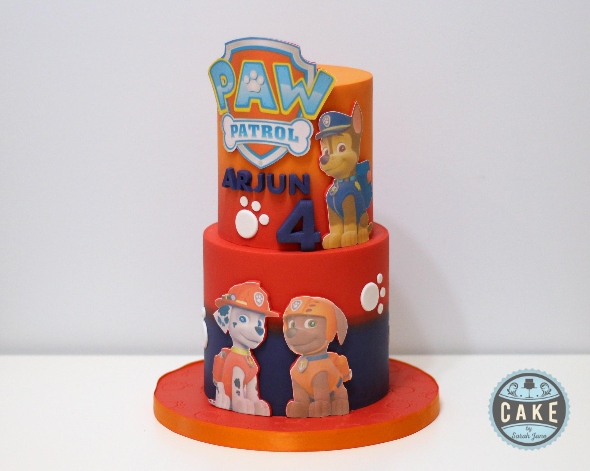 Paw Patrol Cake Ombre