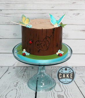 Tree Trunk Butterfly Birthday Cake