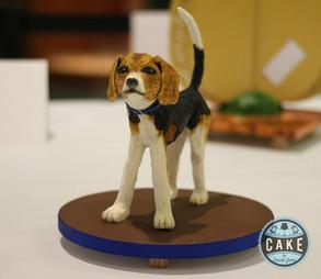 Calgary Sugar Craft Guild Cake Competition 2015!