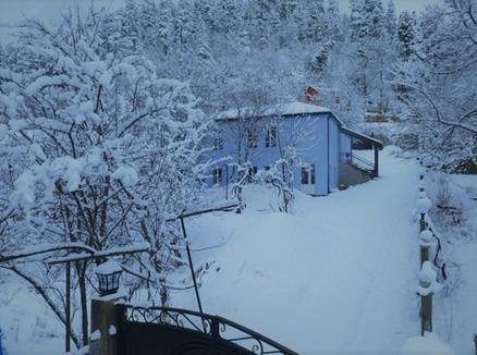 Snow view 1.jpg