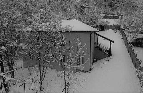 Snow View 4.jpg
