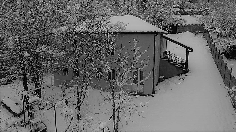 Snow view