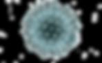 coronavirus_PNG47.png