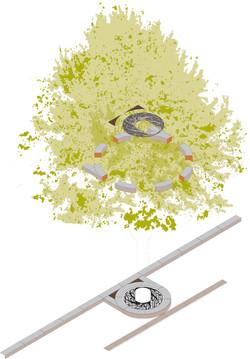 grille-arbre AXO.jpg