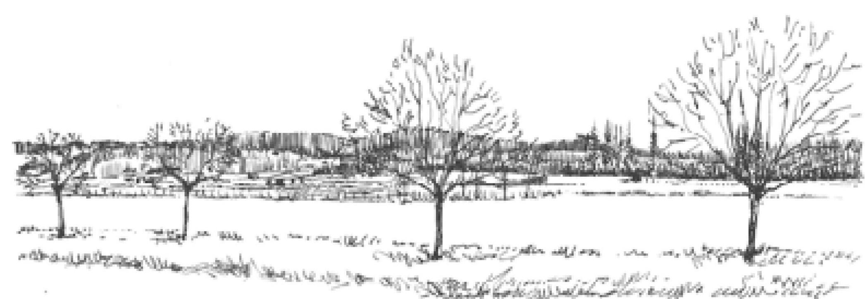 GRO-_Les_4_grandes_séquences_paysageres-Rc01.jpg