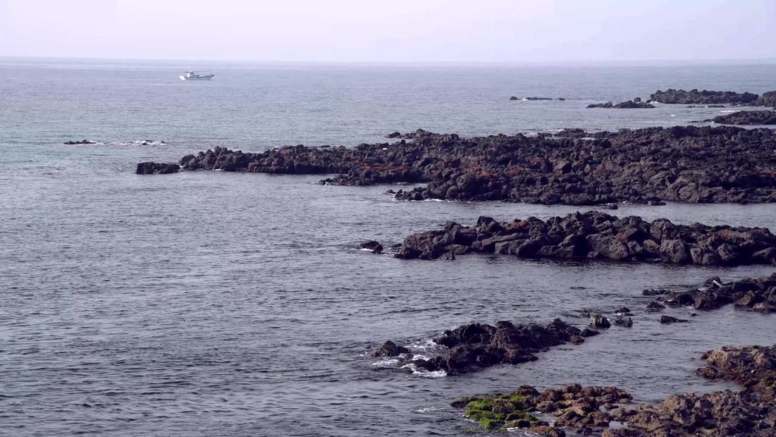 sea.mp4
