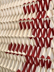 PLECTERE duotone red.jpg