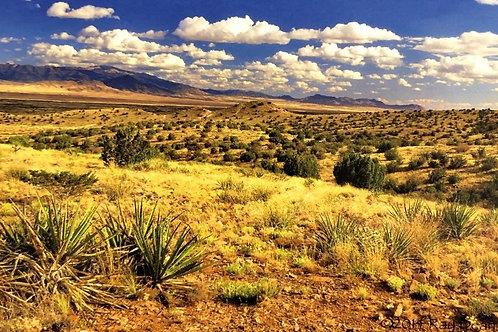 Carrizozo Landscape