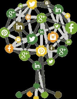 Social-Media-Tree.png