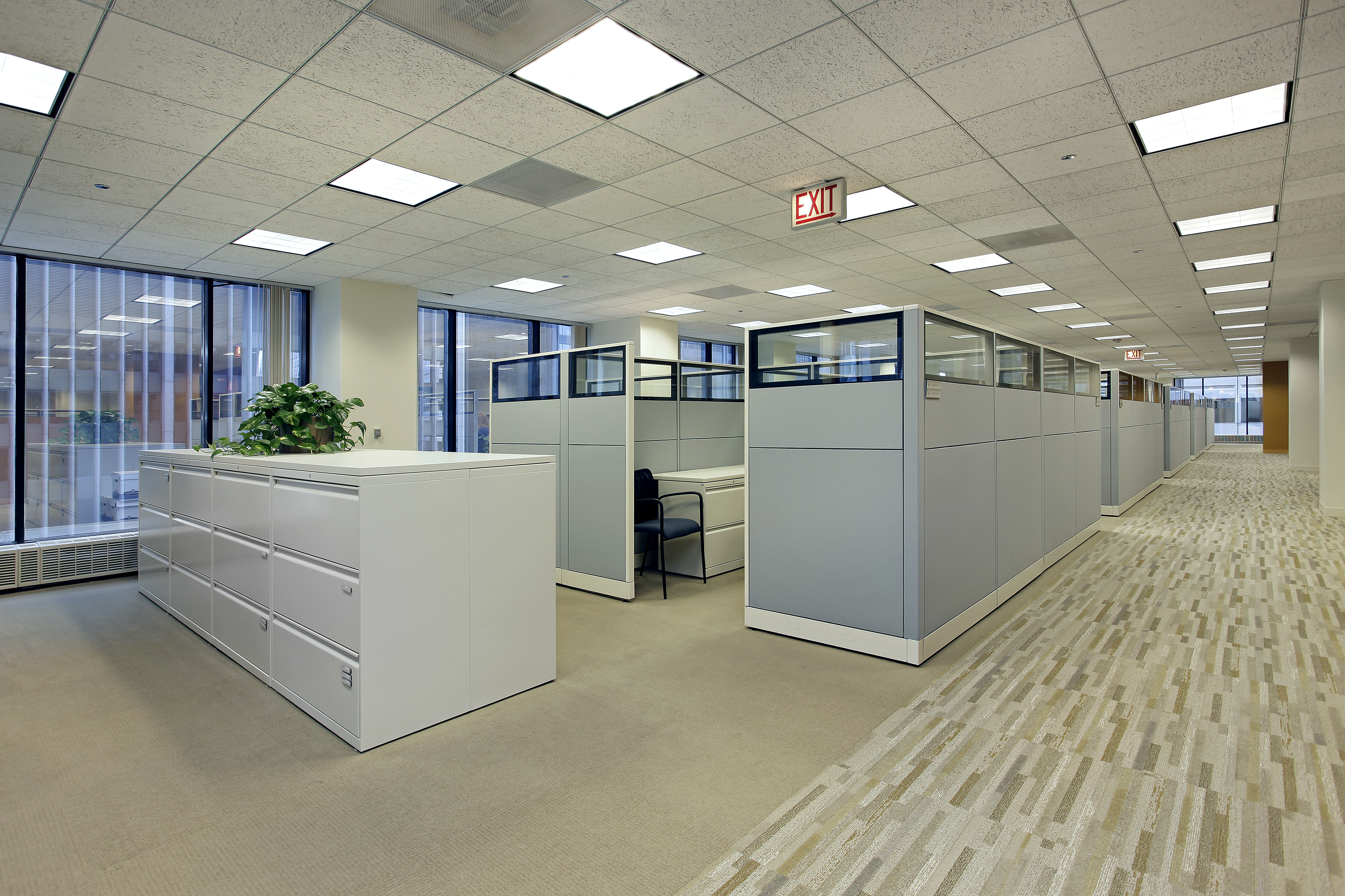 Office area with cubicles in high rise building.jpg
