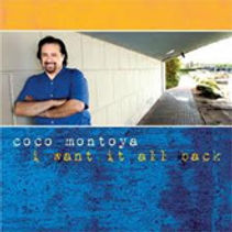 coco montoya, blues guitar