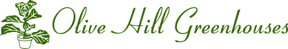 logo-olive_hill_greenhouses.png