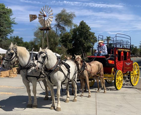 stagecoach cropped smallest.jpg