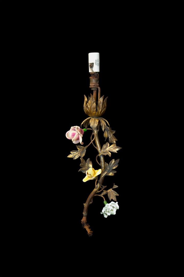 Flower Stem Fragment with Old White Socket