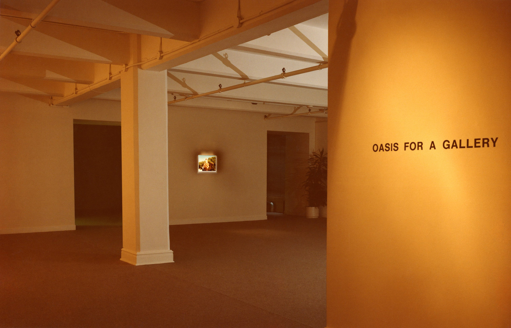 Oasis for a Gallery, Installation