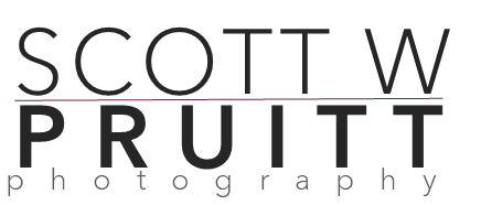 SWP Photo Logo 2021 Monochrome.png