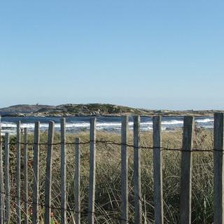 Beach Walk Fence.jpg