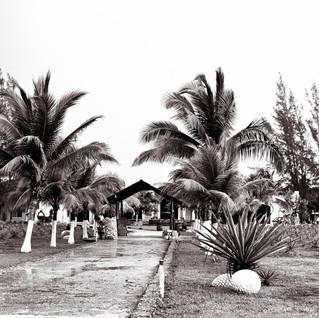 Old Agave Plantation Entrance-1.jpg