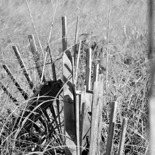 Broken Beach Fence BW.jpg
