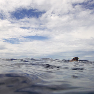 Snorkle Horizon II.jpg