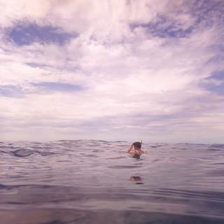 Snorkle Horizon.jpg
