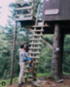 Treetop%20Manor_edited.jpg