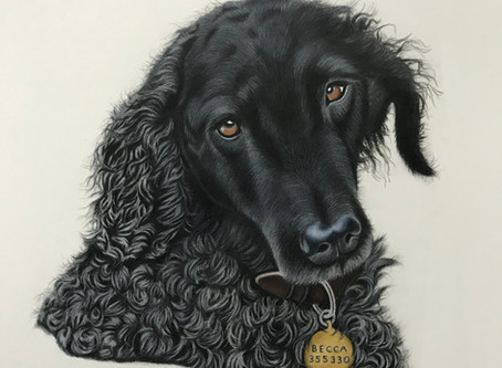 A tribute to a very special lady and her dog