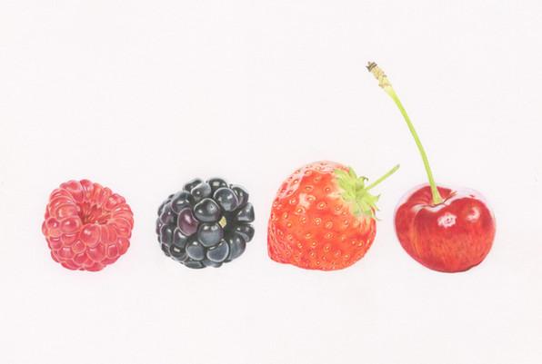 Fruit Medley