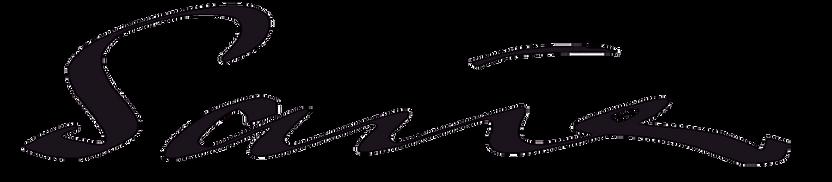 Karin Sauer Raku logo