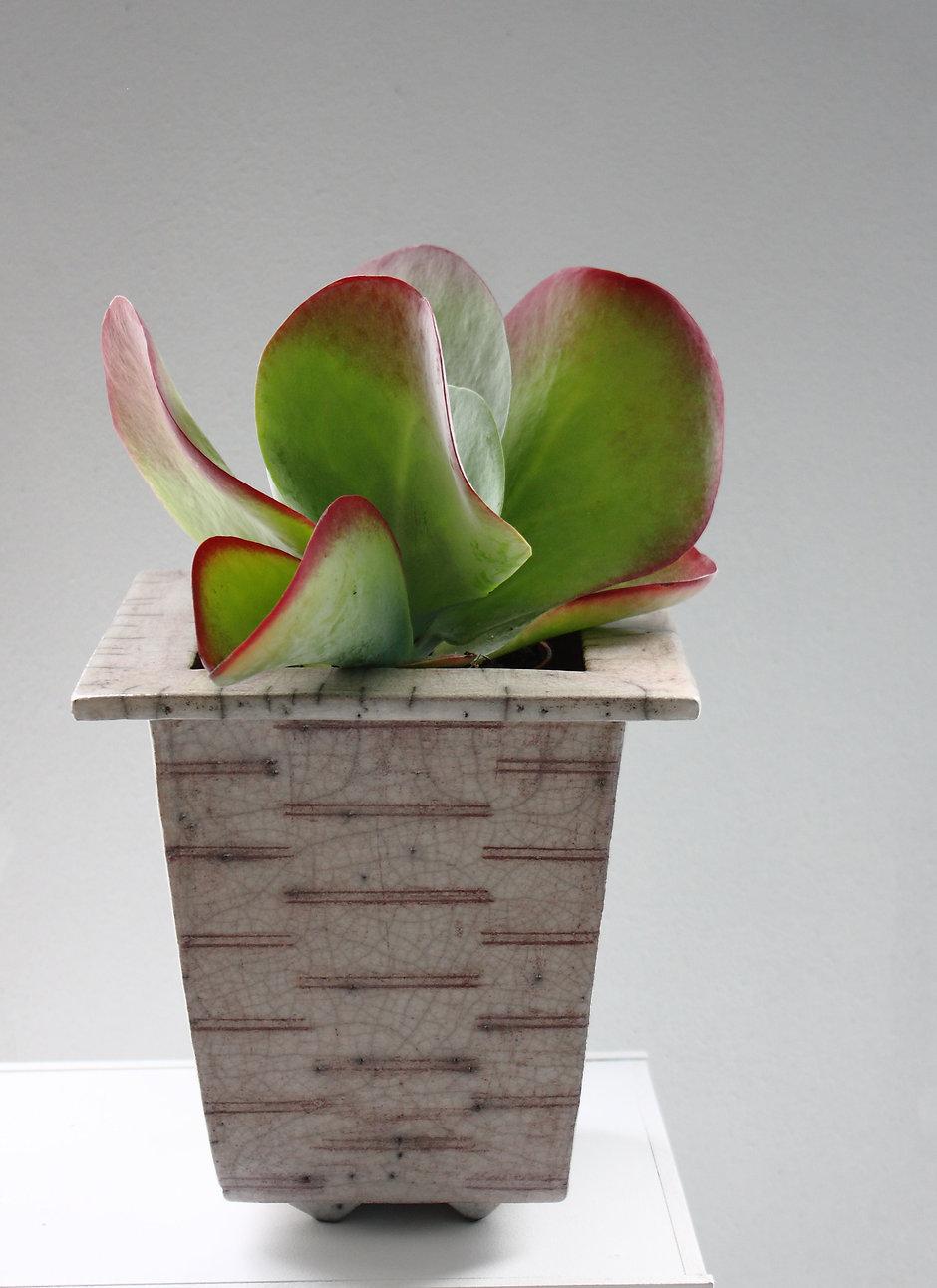 Sauer-raku-plantekrukke.jpg