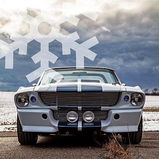 PhotoGallery-winter.jpg