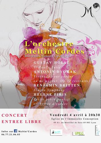 Orchestre Meltin'Cordes