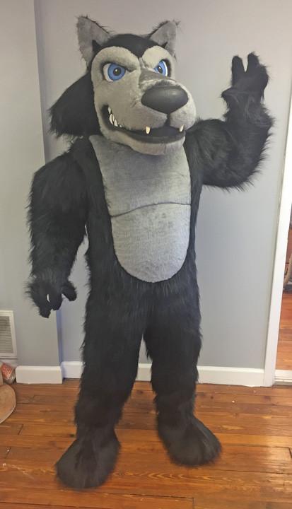 Lobo Black Wolf