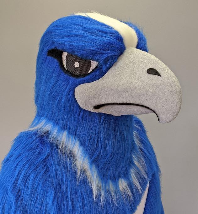 THUNDERBIRD head