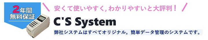 cssystem-head2.png