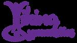 Viking-Gymnastics-logo-type.png