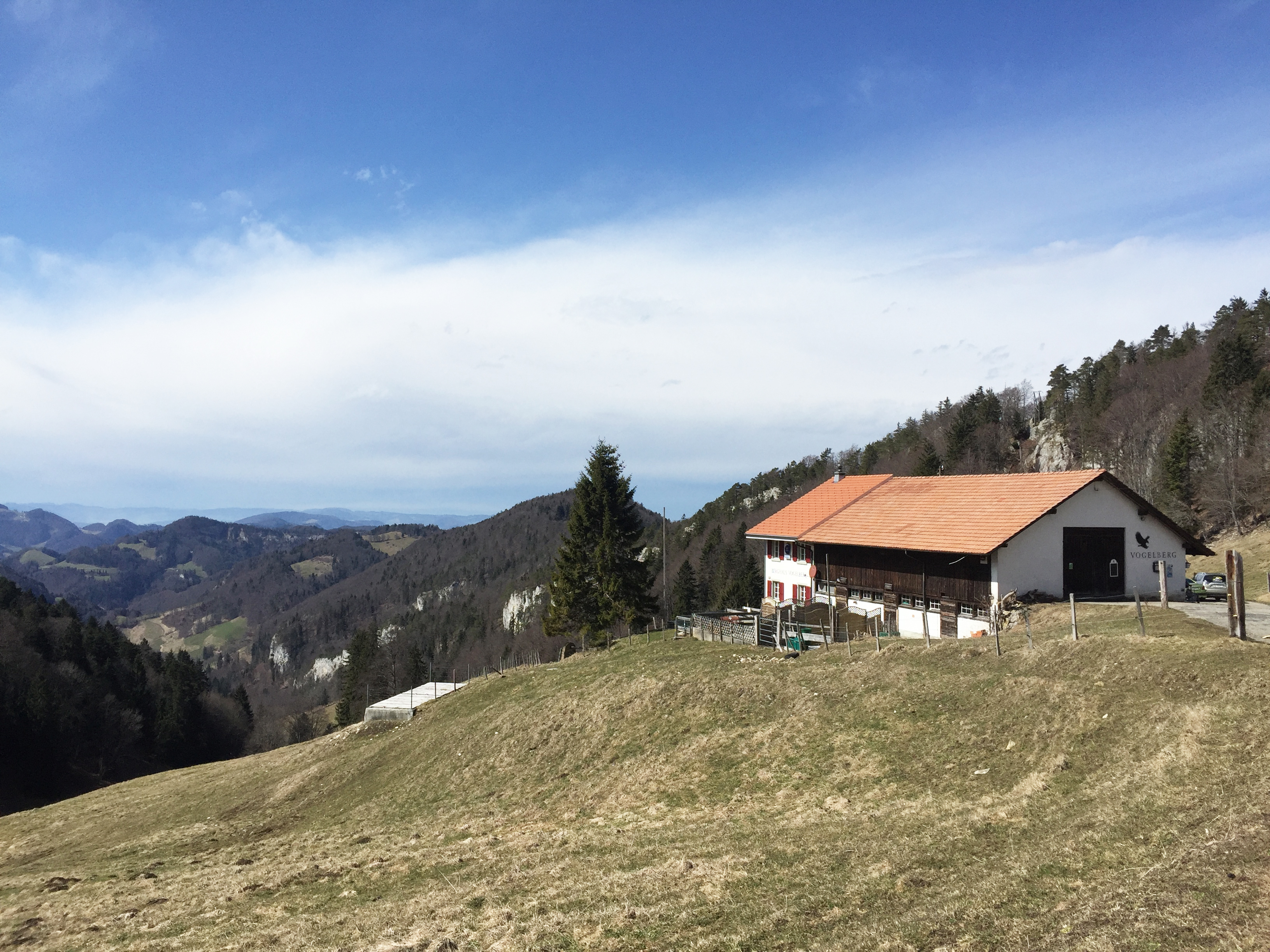 Vogelberg
