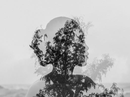 מהי רגישות, כיצד היא יכולה לתרום לנו או בכלל מעכבת אותנו?