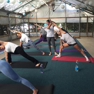 התנסות בהוראת יוגה