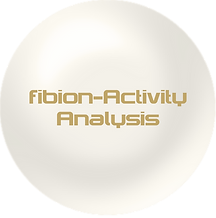 Perle_Activity Analysis fibion.png
