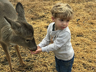 Eli with doe fawn.jpg
