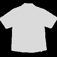 Shirt - greyedout.png