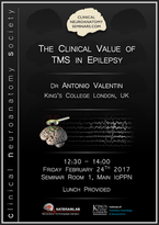 The clinical value of TMS in epilepsy