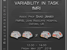 Predicting individual differences in task fMRI