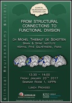 From structural connections to functional divisions