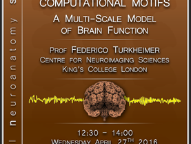 The brain's canonical computational motifs: A multi-scale model of brain function