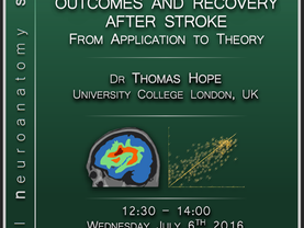 Predicting language outcomes and recovery after stroke: From application to theory