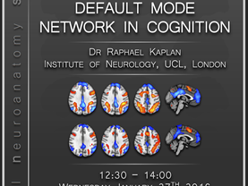 A role  for the default mode network in cognition