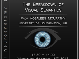 Seeing without meaning: The breakdown of visual semantics