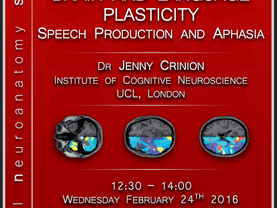 Brain and language plasticity: Speech production and aphasia
